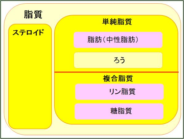 脂質1:脂質の種類: 丸元康生の...